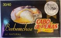 BERBERECHO CABO DE PEÑAS RIA 30/40 OL-120