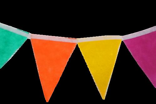 Banderin Liso Multicolor x5