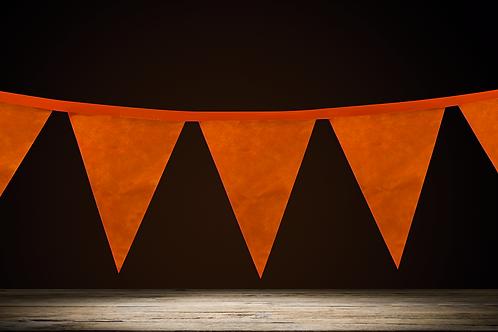 Banderín Liso Naranja Flúo x5