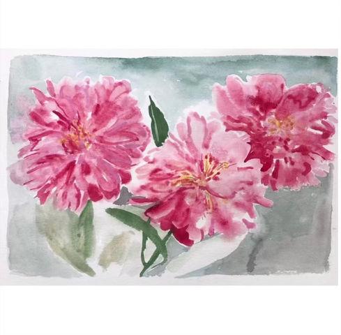 Vibrancies in pink