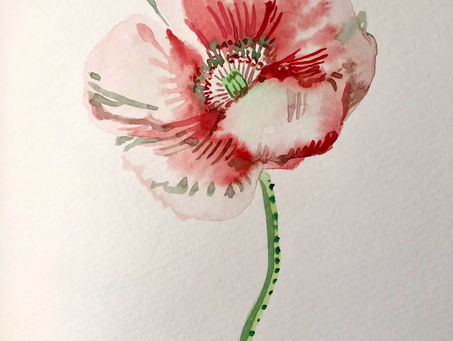 Paint with me watercolors: a poppy