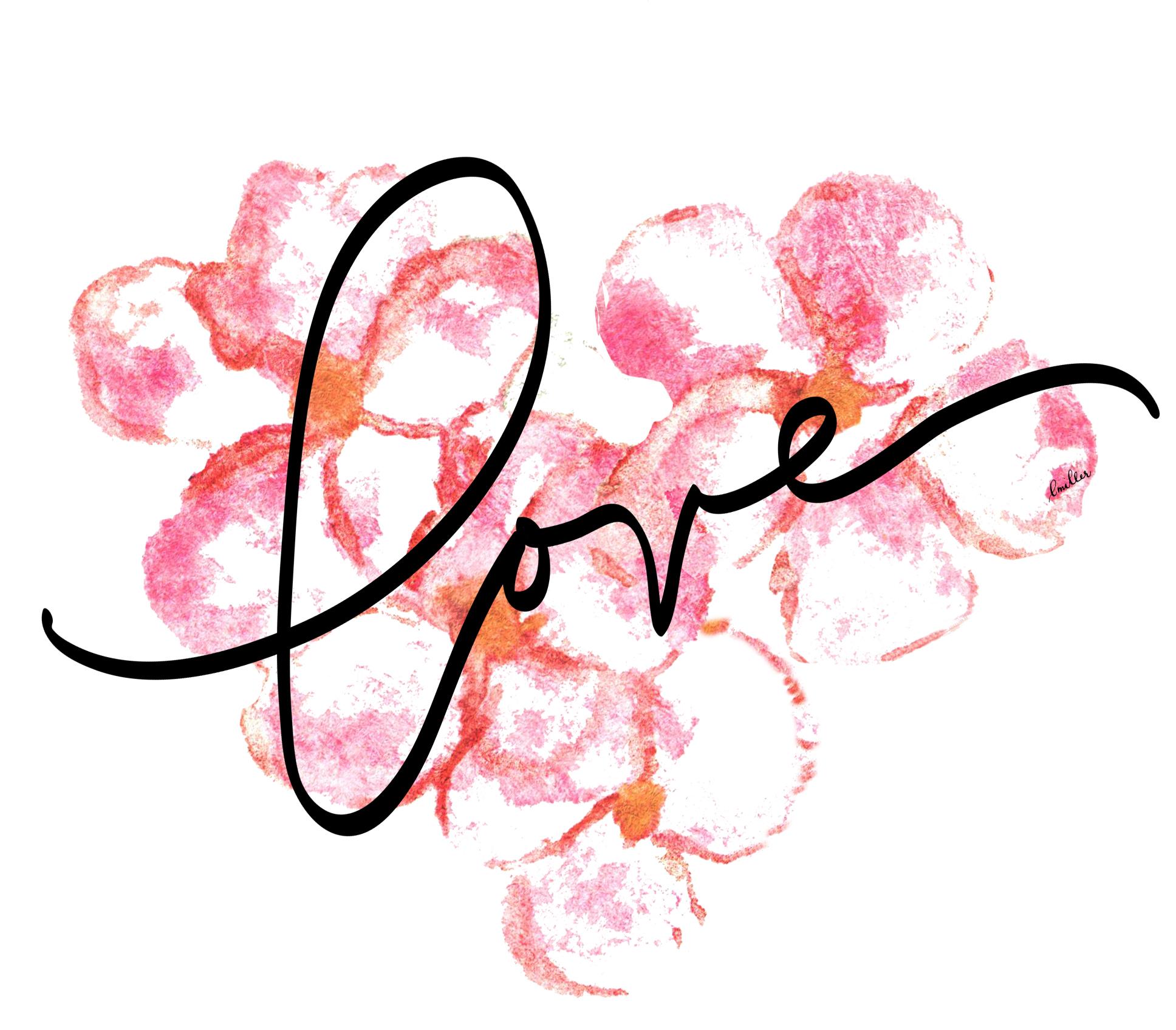 plumeria love