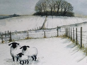 Winter Woolies on Liddington Hill