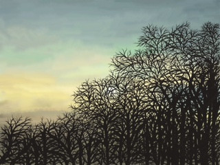 Winter Sunrise, Gill Olney.jpeg
