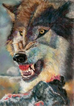 Jim Dowton Wolf - Wild & Free