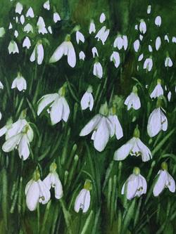 Drops of Joy, Janet Fairman