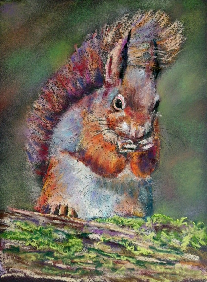 Squirrel, Jim Dowton