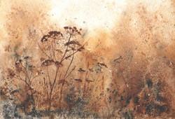 Lyn White, Autumn Glow