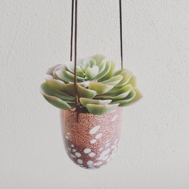 Pollen Hanging Pot