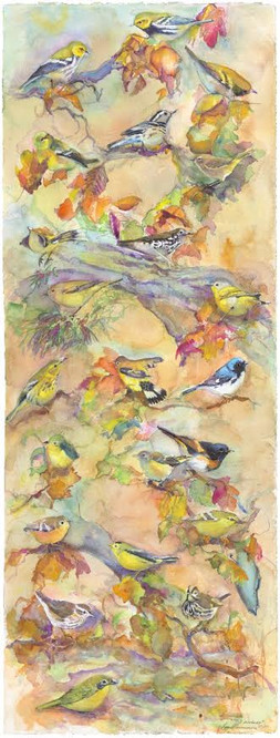 Autumn Warblers