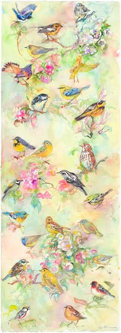 Spring Warblers