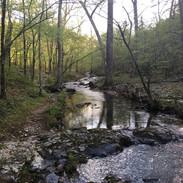 creek-by-trail-spring.jpg