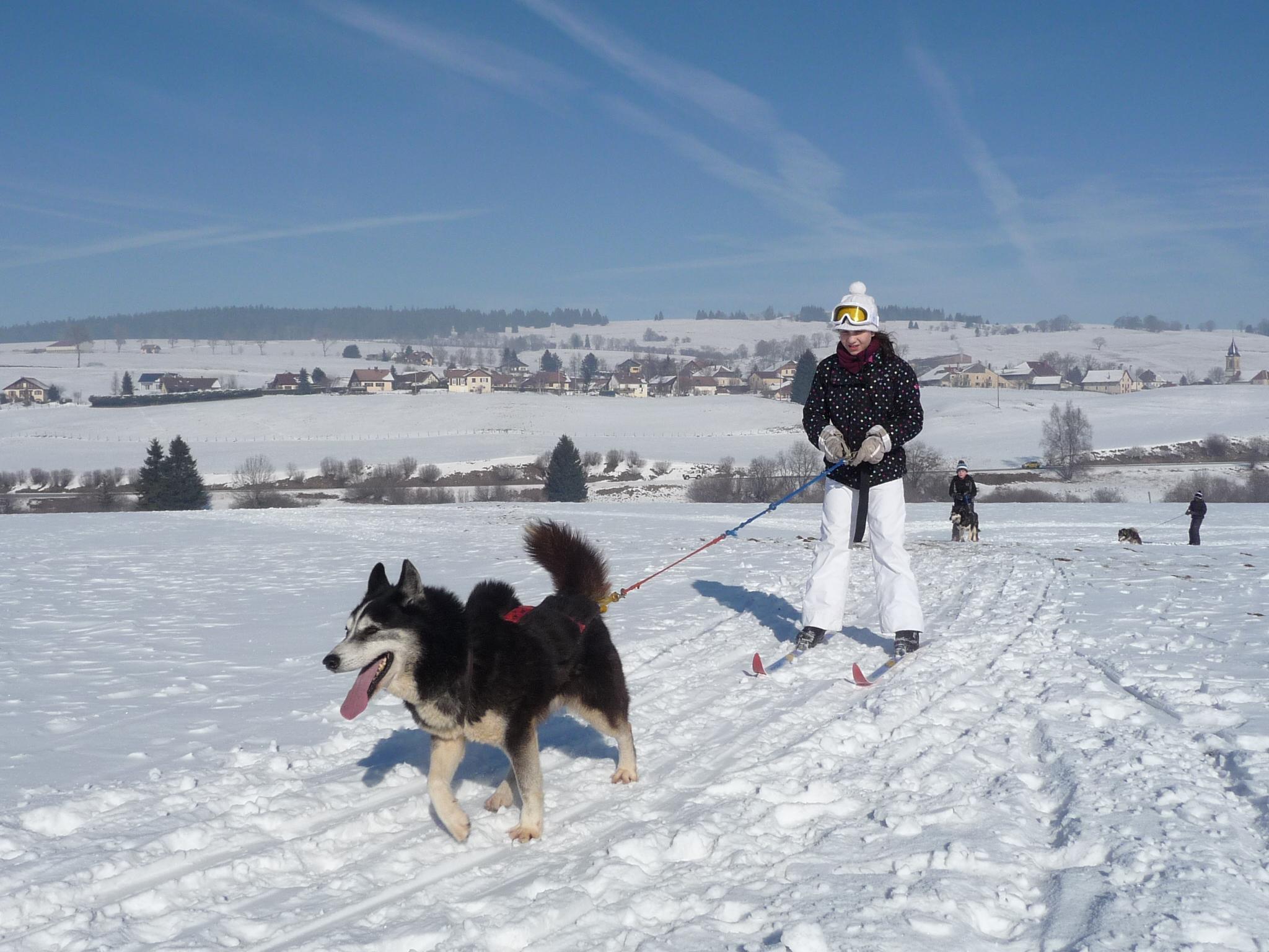 Udson ski joëring