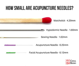 acupuncture-needle-size.png