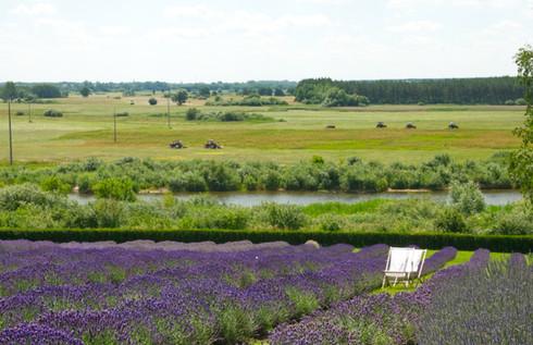 Widok na południowy wschód z pola B