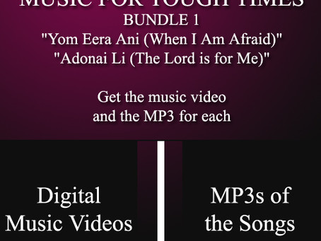 """""""Music for the Tough Times"""" bundle"""