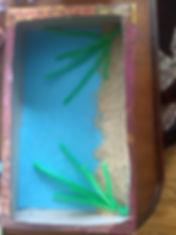 aquarium 4.jpg