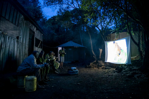 cinema-9.jpg