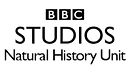 bbc_nhu-300x168_edited.png