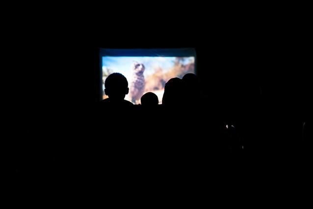 cinema-12.jpg