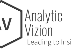Analytic Vizion - We are Leading. To. Insight.