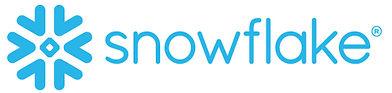 SNO-SnowflakeLogo_blue copy (002).jpg