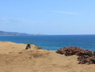 San Diego Neighborhood Guide: Del Mar