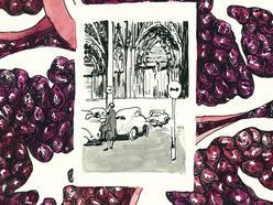 pomegranate detail.jpg