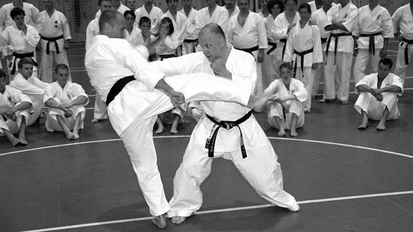 Makotokai_web_Karate.png