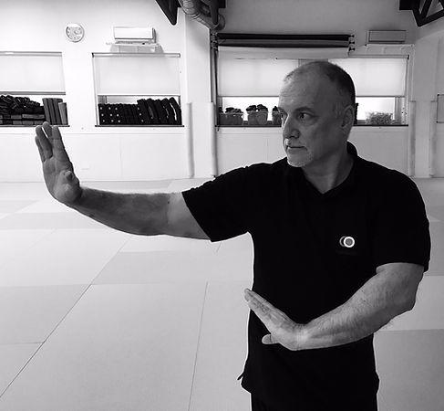 Pa Kwa Chang | Makoto arti marziali