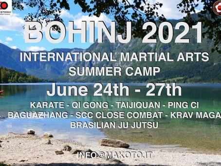 International Martial Arts Summer Camp