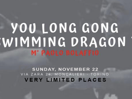 You Long Gong - The Swimming Dragon Taiji