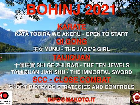 Bohinj seminar program 2021