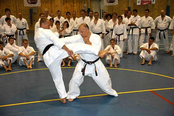 Karate Makotokai | Makoto arti marzili