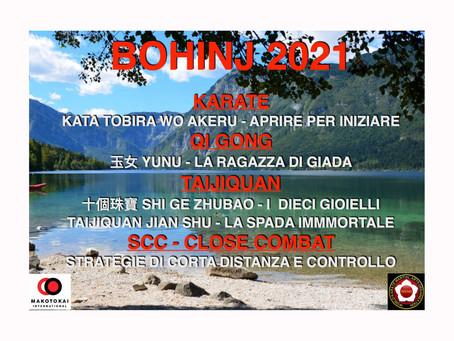 Programma Bohinj 2021
