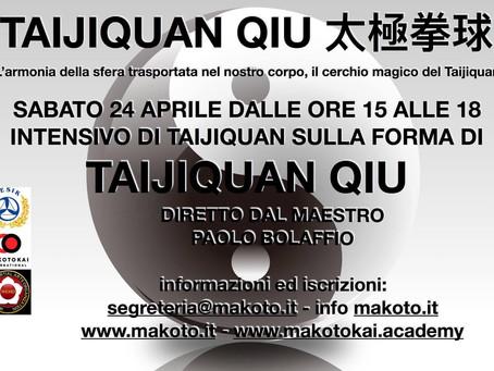 """Seminario """"Taijiquan Qiu"""""""