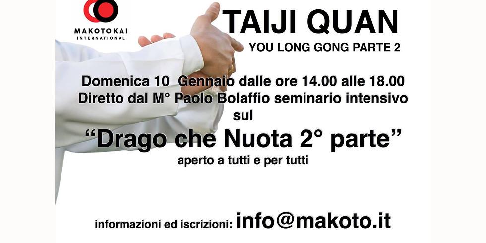 Seminario Online di Taijiquan - Il Drago Che nuota - parte 2