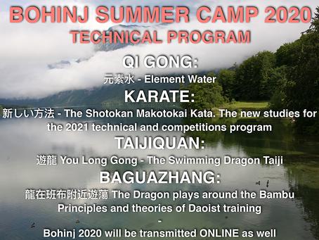 Martial Arts Seminar in Bohinj (SLO)
