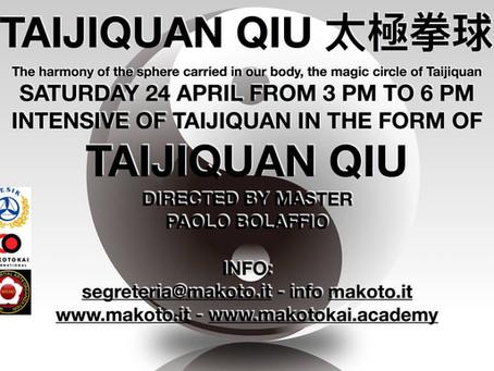 "Taiji seminar ""Taijiquan Qiu"""