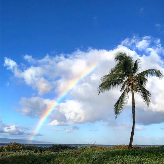 Favorite things in Maui