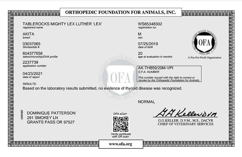 Lex OFA Thyroid.jpg