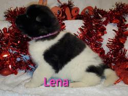 Lena left.jpg