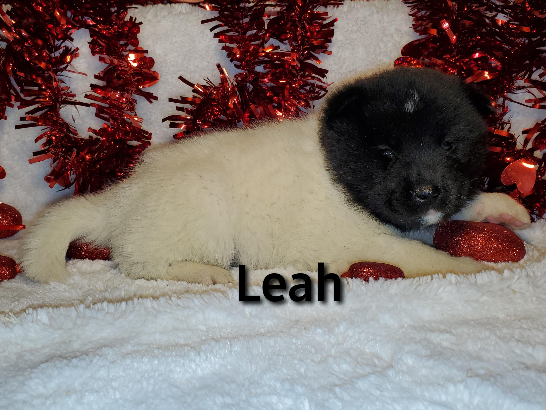Leah right.jpg