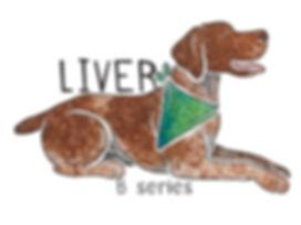 DNA Dog.jpg