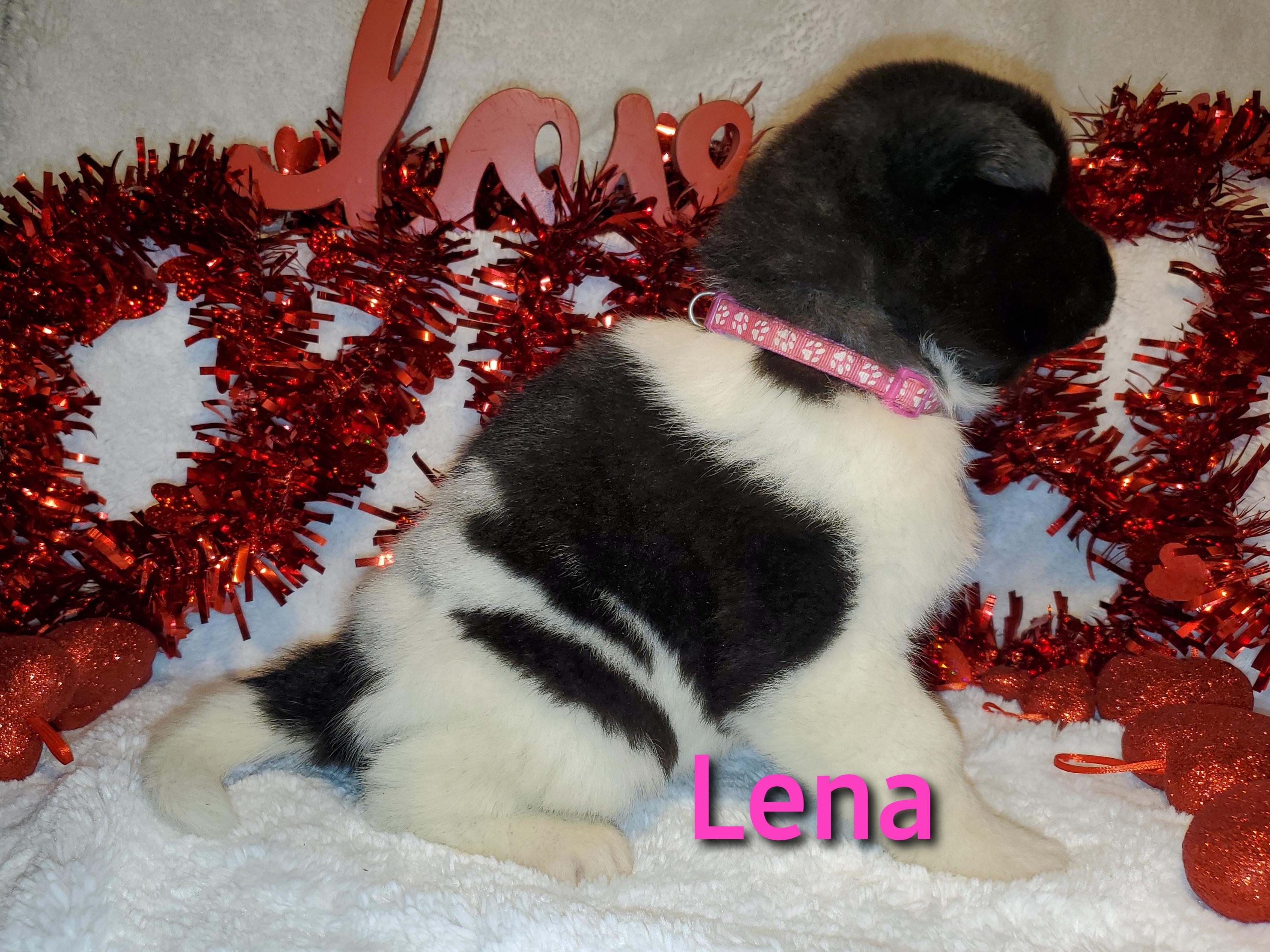 Lena right.jpg