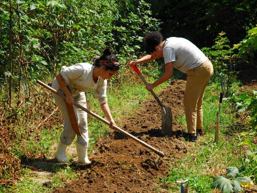 Plantar é um ato revolucionário: a participação das mulheres para modelos agrícolas mais justos.