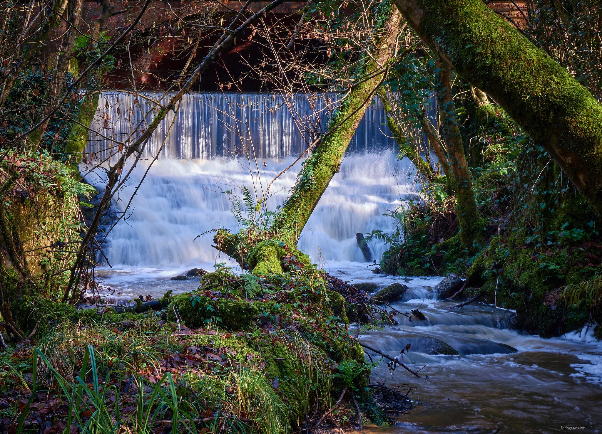 Walkford Weir