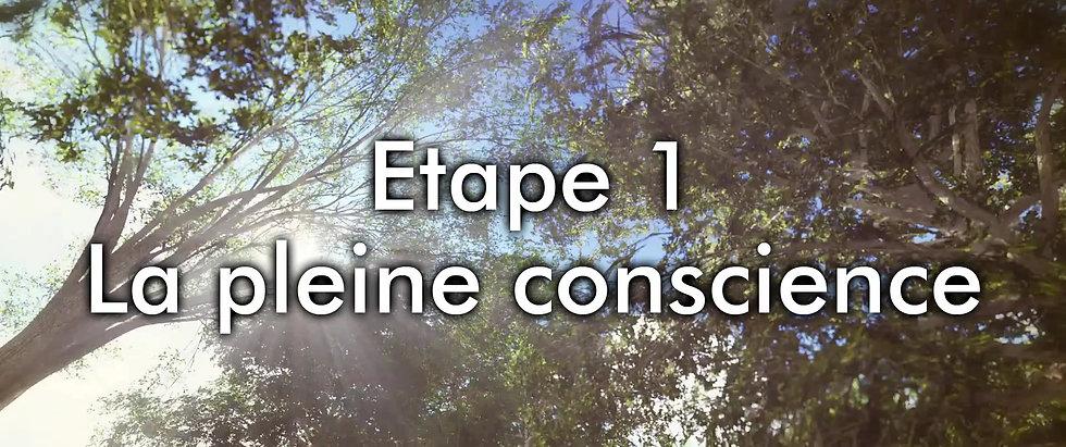 Pleine conscience - methode LM-chemin de liberation mental