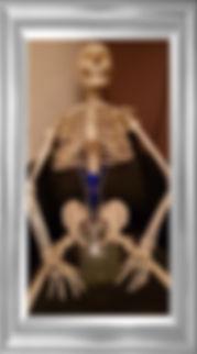 Skeleton 2a.jpg