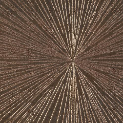 Raylight Star Copper 12x48 Metal Look Porcelain Tile